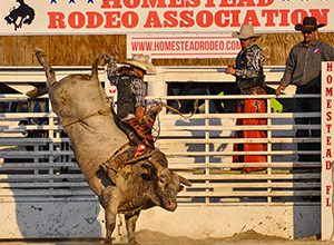 Ernie Courson - Pro Bull Rider - Homestead Rodeo 2020